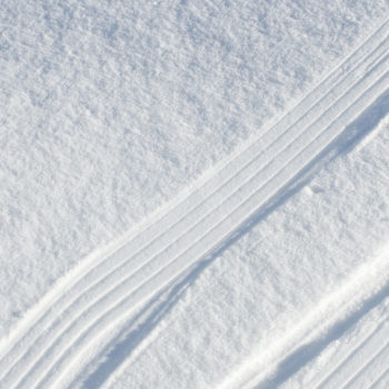 Absinthe Boréale crunching snow texture - Maison Crivelli
