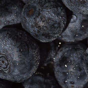 Bois Datchai 03 mure acidulé fruité ronces 900x1200 - Maison Crivelli