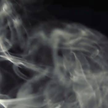Bois Datchai 04 thé noir thé fumé fumée 1200x900 - Maison Crivelli