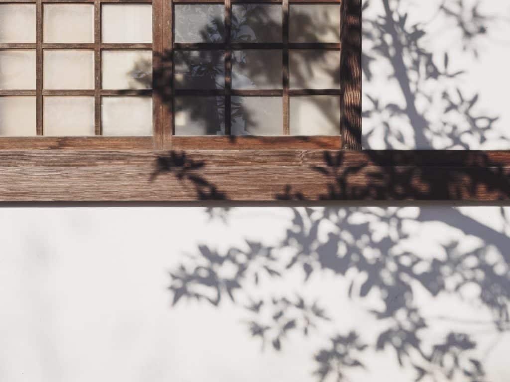 Fleur Diamantine 04 jardin ombre - Maison Crivelli