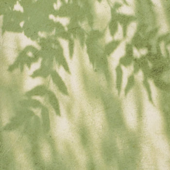 Fleur Diamantine 06 ombre jardin vert - Maison Crivelli
