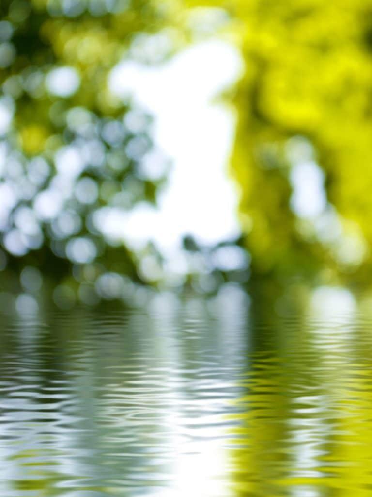Fleur Diamantine 09 reflection fountain - Maison Crivelli