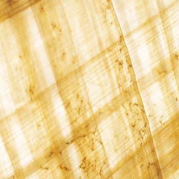 Papyrus Moléculaire 01 papyrus twist 1200x900 - Maison Crivelli