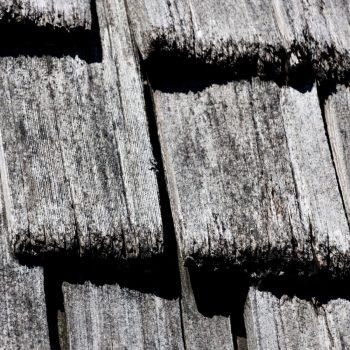 Santal Volcanique 05 bois brulé cèdre bois santal texture noire - Maison Crivelli
