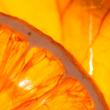 citrus batikanga 02 citrus fever 1200x900 - Maison Crivelli