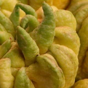 citrus batikanga 04 spicy bergamot 1200x900 - Maison Crivelli