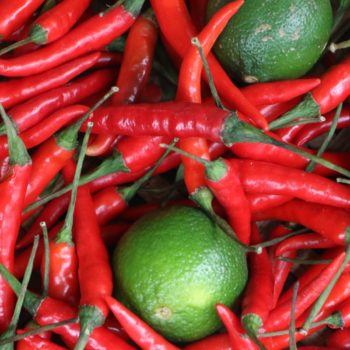citrus batikanga 09 lime chilli spicy perfume 900x1200 - Maison Crivelli
